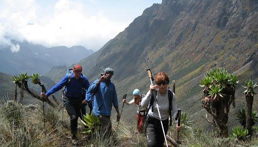 4-Days Gorillas & Karisimbi hike Tour